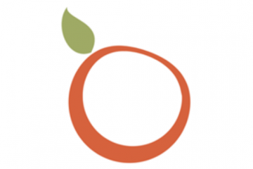 WordPress主题柚子皮(yzipi)5.62版本分享