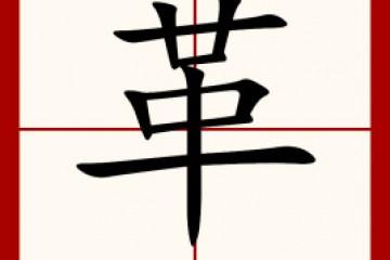 革的拼音和组词_革字谜语